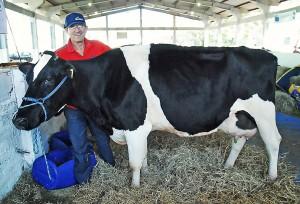 Vacas premiadas do produtor Leopoldo Cavaleiro recebem alimentação de pastagens semeadas com Azevém Nibbio e Híbrido de Milheto Valente, ambos da Sementes Adriana. (Divulgação/Fenamilho)